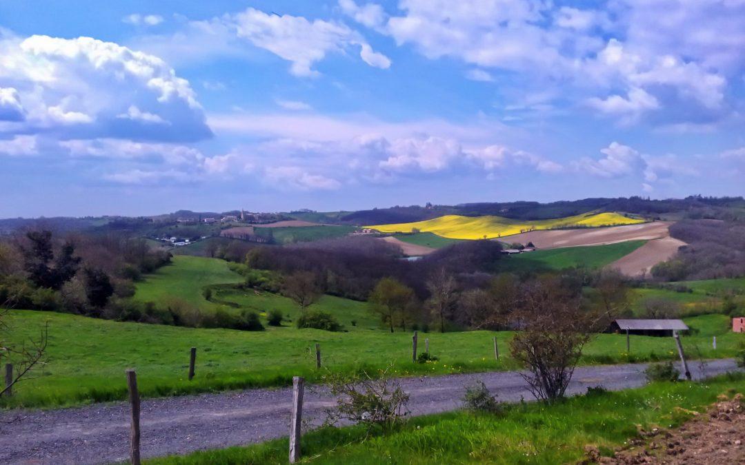 La poubelle, l'âne et le paysage…